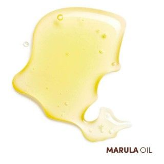 Shampoing Clarifiant 500ml Essential Keratin