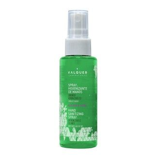 Hand Sanitizing spray Gel -...